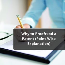 Why to Proofread a Patent