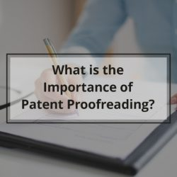 Importance of Patent Proofreading