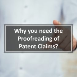 Proofreading of Patent Claims