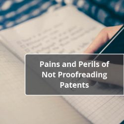 Pains and Perils of Not Proofreading Patents